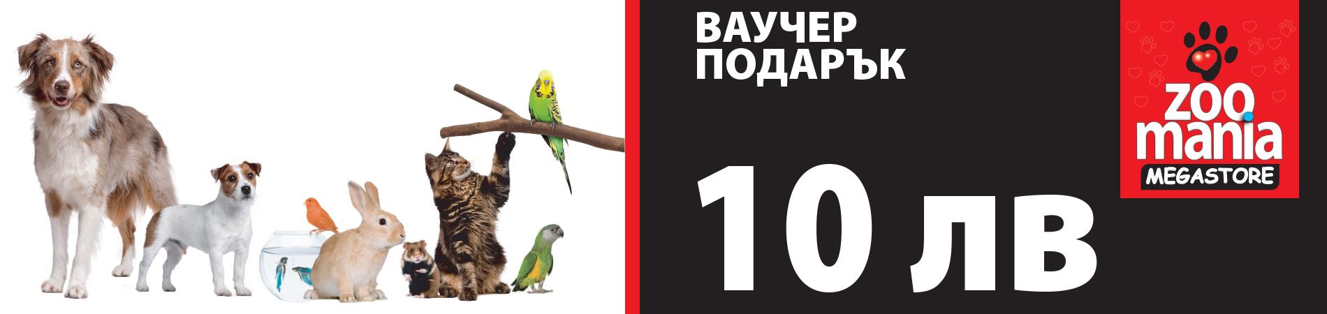 10leva